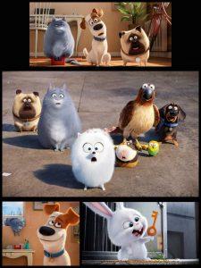 "Eindrücke aus ""Pets"" (Copyright: Universal Pictures Germany GmbH)"